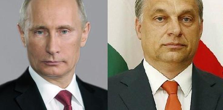 Węgry dogadają się z Rosją? Orban chce negocjacji - zdjęcie