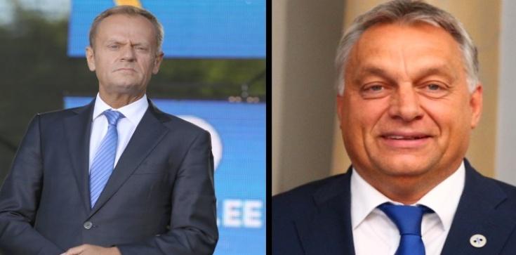 Tusk porównuje Węgry do III Rzeszy - zdjęcie