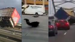 Orkan Fryderyka zabija. Przerażające nagrania! - miniaturka