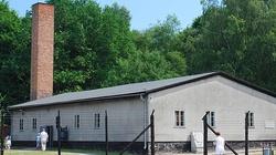 W Niemczech rusza proces byłej sekretarki obozu koncentracyjnego Stutthof koło Gdańska - miniaturka