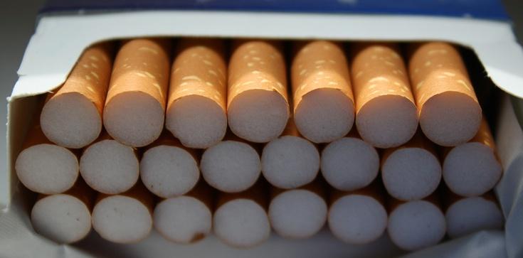 Cela Plus: Gang tytoniowy rozbity. Skarb Państwa stracił prawie 121 mln złotych - zdjęcie