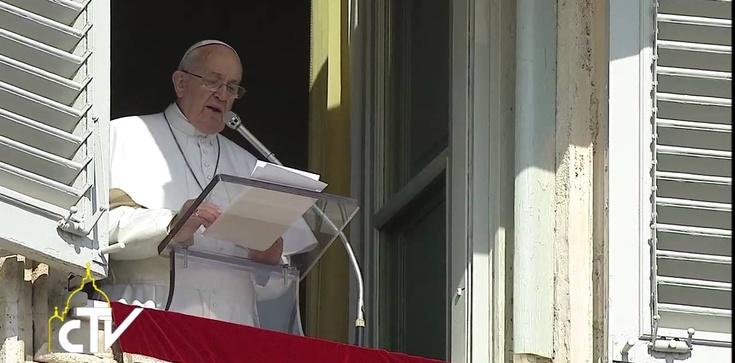 Franciszek: O walce łaski z grzechem - zdjęcie
