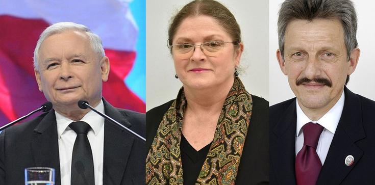 Matka Kurka: Cała ,,zagadka'' nominacji do TK - zdjęcie