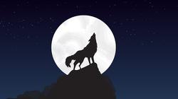 Pierwszy tzw. Wilczy Księżyc w tym roku już dzisiaj - miniaturka