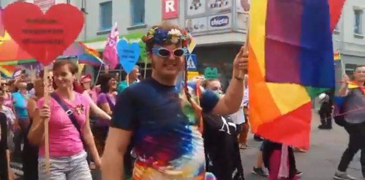 Oto, kto był na Marszu Równości w Płocku! Te same stare twarze KODomitów!  GDZIE ABW? - zdjęcie