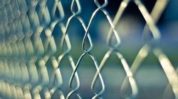 Niemcy: Elektryczny płot na granicy z Polską - miniaturka