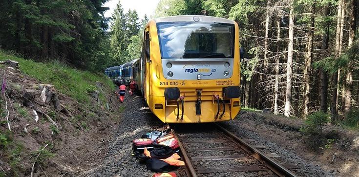 Z ostatniej chwili! Czołowe zderzenie pociągów w Czechach - zdjęcie