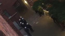 Niebywałe! Policjanci chowają się przed lewakami - ZOBACZ FILM - miniaturka
