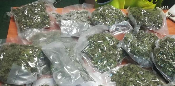 Cela Plus! Policjanci zabezpieczyli ponad 26 kilogramów marihuany - zdjęcie