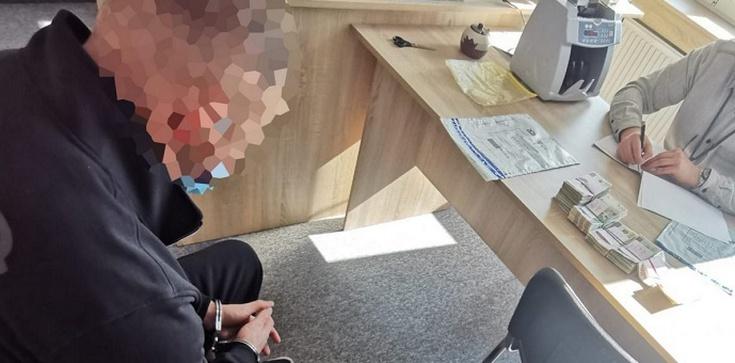 """800 luksusowych samochodów na """"SŁUPY"""" i bez podatków. Oszukali na VAT ok. 35 mln zł - zdjęcie"""