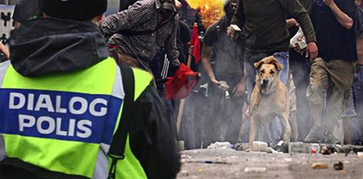 Szwedzka policja alarmuje: Nad niektórymi obszarami Sztokholmu zdominowanymi przez imigrantów straciliśmy kontrolę! - zdjęcie