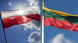 Litwa solidaryzuje się z Polską. Idzie o Rosję - miniaturka