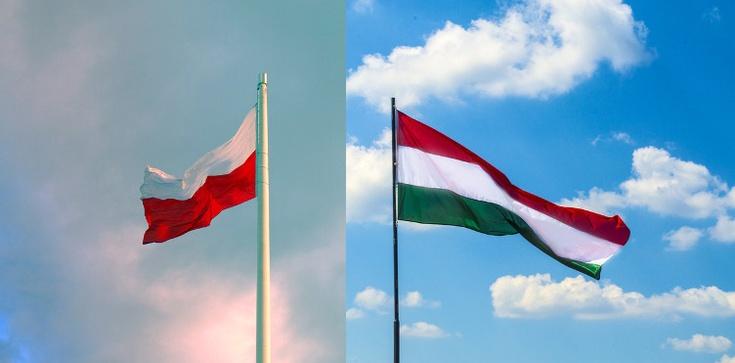 Polska i Węgry. Sprzeczne interesy na wschodzie - zdjęcie