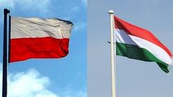 Polska i Węgry - podpisano porozumienie między parlamentami - miniaturka