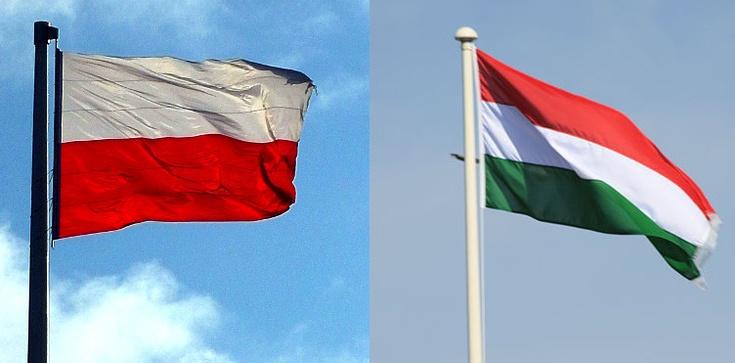 Igor Janke tłumaczy, czy Polska i Węgry zmienią Europę - zdjęcie