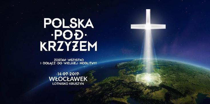 o.Jacek Gniadek: Moc Polski pod krzyżem. Więcej ludzi niż na Marszach Równości. Jest siła, nie da się ukryć! - zdjęcie