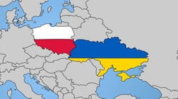 Sondaż. Jak Polacy oceniają Ukraińców pracujących i mieszkających w Polsce? - miniaturka