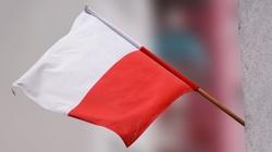 Zbigniew Kuźmiuk: Polska gospodarka pędzi! Szybciej niż w krajach strefy euro - miniaturka