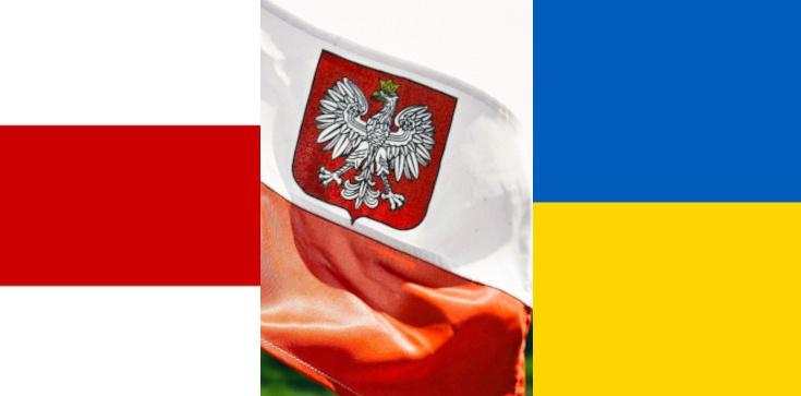 Jerzy Karwelis: Polska polityka zagraniczna i jej credo: nic o Ukrainie i Białorusi bez nas, niestety nie działa - zdjęcie