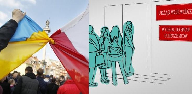 Polska celem cudzoziemców. Sposób na dziurę demograficzną? Uprośćmy procedury, doinwestujmy urzędy - zdjęcie
