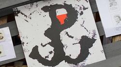 Skandaliczne!!! USA: Znak Polski Walczącej na ulotkach wśród symboli nazistowskich - miniaturka