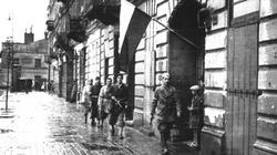Senat USA upamiętnił Powstanie Warszawskie. Przypomniano też o bierności sowietów - miniaturka