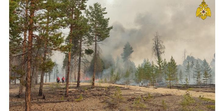 Pożary na Syberii. Dym tak gęsty, że trzeba było odwołać loty i rejsy - zdjęcie