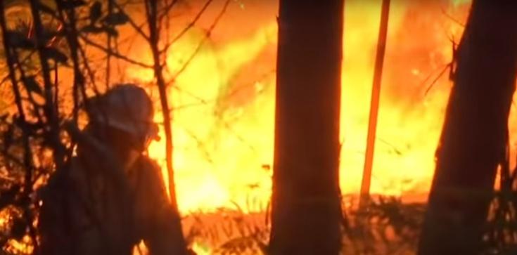 Portugalia w płomieniach! ''Dym zasłania słońce'' - zdjęcie