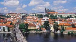 Czeski nalot na islamistów - miniaturka