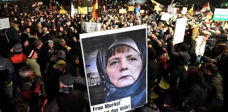Matka Kurka: Opiniotwórczy polski portal kontrowersje.net: Niemcy wracają do polityki rasowej Hitlera! - zdjęcie