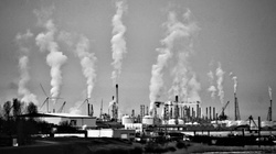 Neutralność klimatyczna - pusty frazes? - miniaturka
