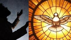 W oczekiwaniu na Zesłanie Ducha Świętego - miniaturka