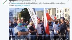 Protest przed siedzibą PiS przeciwko ustawie ,,Piątka dla zwierząt'' - miniaturka