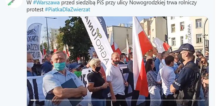 Protest przed siedzibą PiS przeciwko ustawie ,,Piątka dla zwierząt'' - zdjęcie