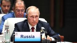 Putin wypiera się pałacu pod Gelendżykiem. ,,To własność przedsiębiorcy''  - miniaturka