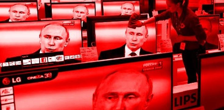 Ponad połowa Rosjan uważa Putina za przestępcę. Oto prawda o Rosji! - zdjęcie
