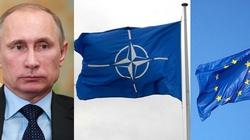 Politico: na czele NATO może stanąć kobieta z krajów bałtyckich - miniaturka