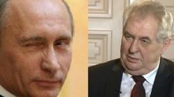 """Losy """"przyjaciela Putina"""". Prezydent Czech podejrzany o zdradę stanu, sabotaż lub działania wywrotowe przeciwko republice? - miniaturka"""
