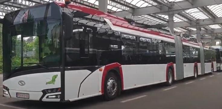 BRAWO POLSKA! Pierwszy w Polsce szkolny autobus elektryczny zawiezie dzieci na lekcje - zdjęcie