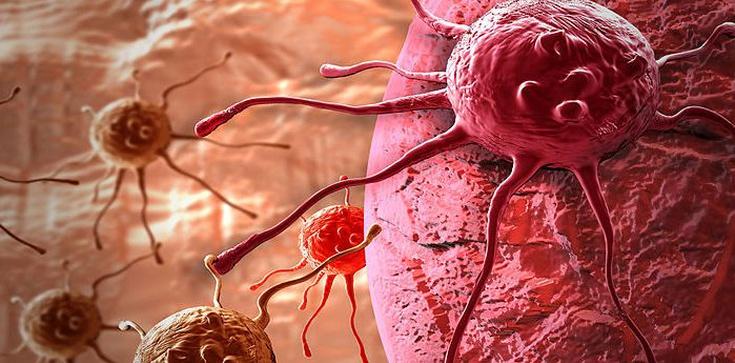 Dziś Światowy Dzień Walki z Rakiem - zdjęcie