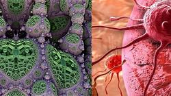 Belgia. Komórki raka zniszczono nanocząsteczkami miedzi - miniaturka