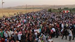 Kryzys imigracyjny... dopiero się zaczyna! - miniaturka