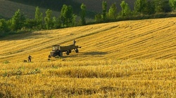 Zbigniew Kuźmiuk: Dobra zmiana w rolnictwie! - miniaturka
