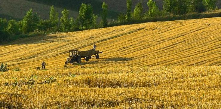 Zbigniew Kuźmiuk: Dobra zmiana w rolnictwie! - zdjęcie