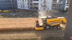 [Wideo] Rolnik z Lublina jak Drzymała. Nie uległ kuszącym ofertom deweloperów. Dalej sieje i zbiera plony - miniaturka