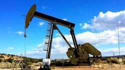 Złoża ropy w okolicach Świnoujścia? Mogą wystarczyć na 30 lat - miniaturka
