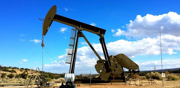 Złoża ropy w okolicach Świnoujścia? Mogą wystarczyć na 30 lat - zdjęcie