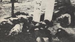 Na Wigilię Niemcy wrzucali do ognia dzieci w Ochotnicy Dolnej  - miniaturka