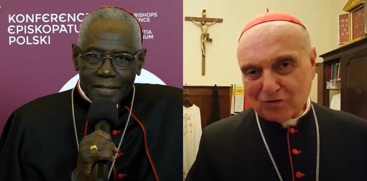 Rezygnacja kardynałów Saraha i Comastriego. Papież przyjął ich rezygencję - zdjęcie