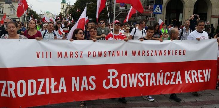 Naczelny rabin Polski szkaluje polskich patriotów i chce odebrać im prawo do manifestowania - zdjęcie
